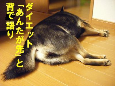 debu6_20111002113541.jpg