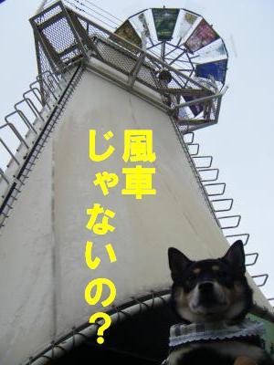 kurokabe4.jpg