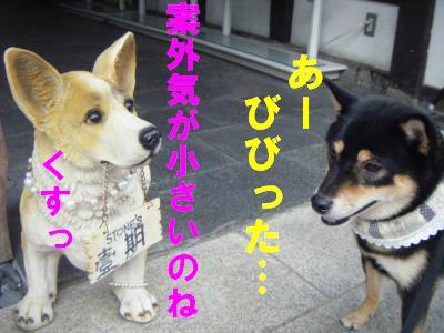 kurokabe5.jpg
