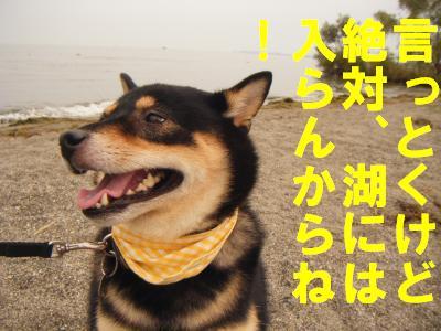 nagahama3.jpg