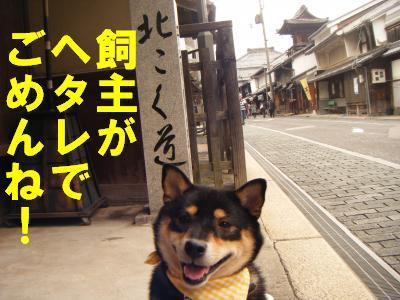 nagahama7.jpg