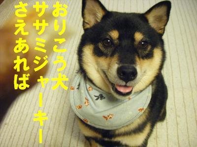 sya-ki2.jpg