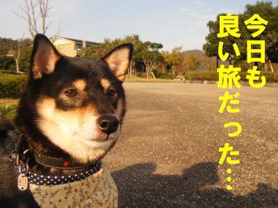 takahama1.jpg