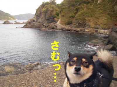 takahama4.jpg