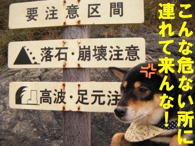 takahama5.jpg
