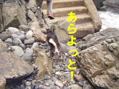 takahama6.jpg