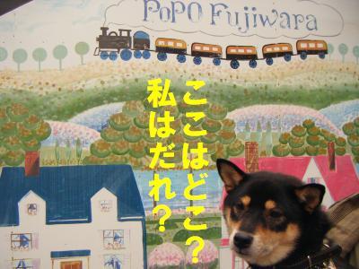 takahama7.jpg