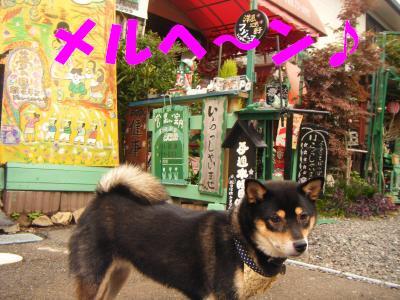takahama8.jpg