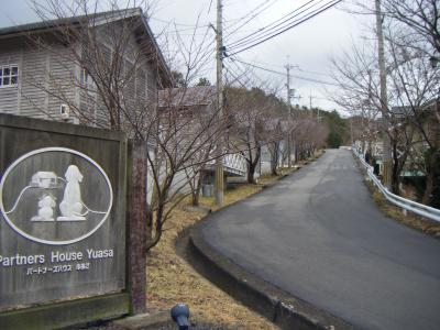 wakayama26.jpg