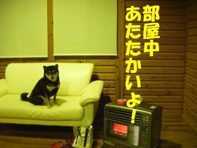 wakayama42.jpg