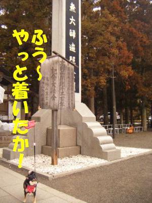 wakayama8.jpg