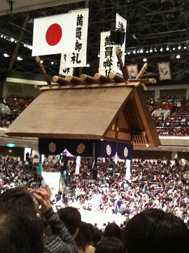 018-sumo.png