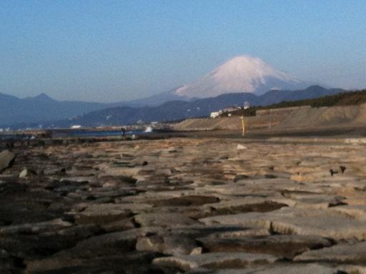 028-fuji.jpg