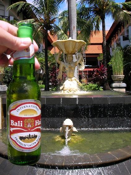 SANY0020-Bali.jpg