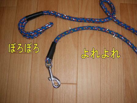 c100728-2w.jpg