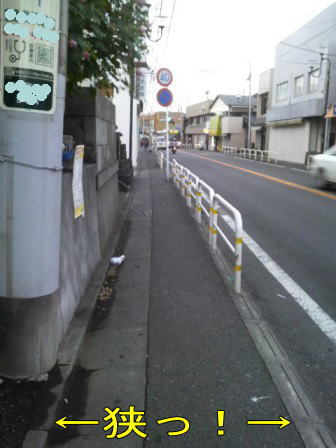 c100831-3w.jpg