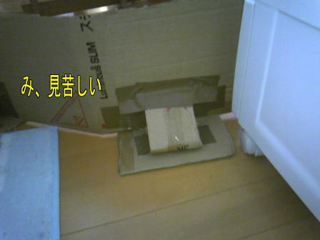c100904-3w.jpg