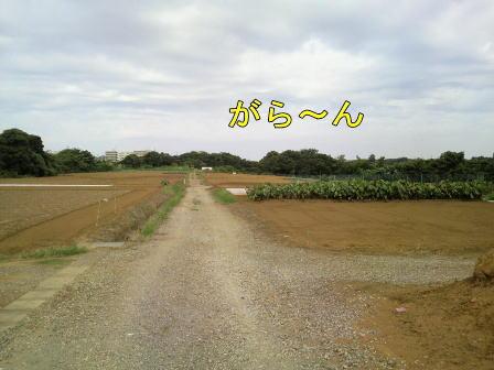 c100920-2w.jpg