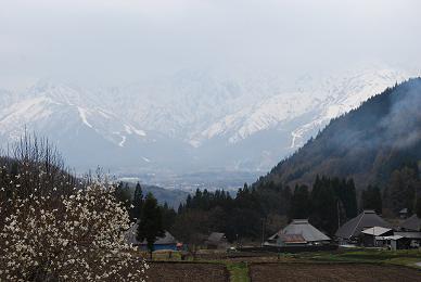 青鬼から見た雪山