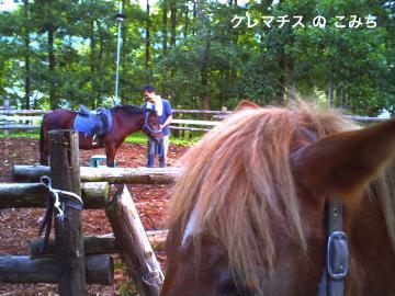 PICT0362_convert_20111012230831-2.jpg
