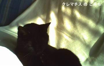 PICT0444-2_convert_20120224003835-2.jpg