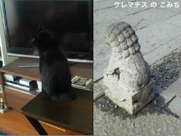 maru_and_komainu_convert_20120116225654-2.jpg