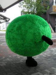 20110528_02.jpg
