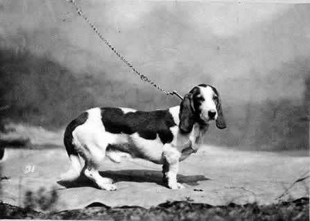 1879old.jpg