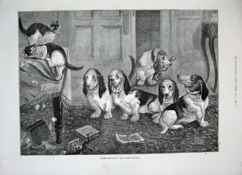 1884pic.jpg