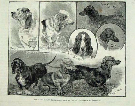 1886westadd.jpg