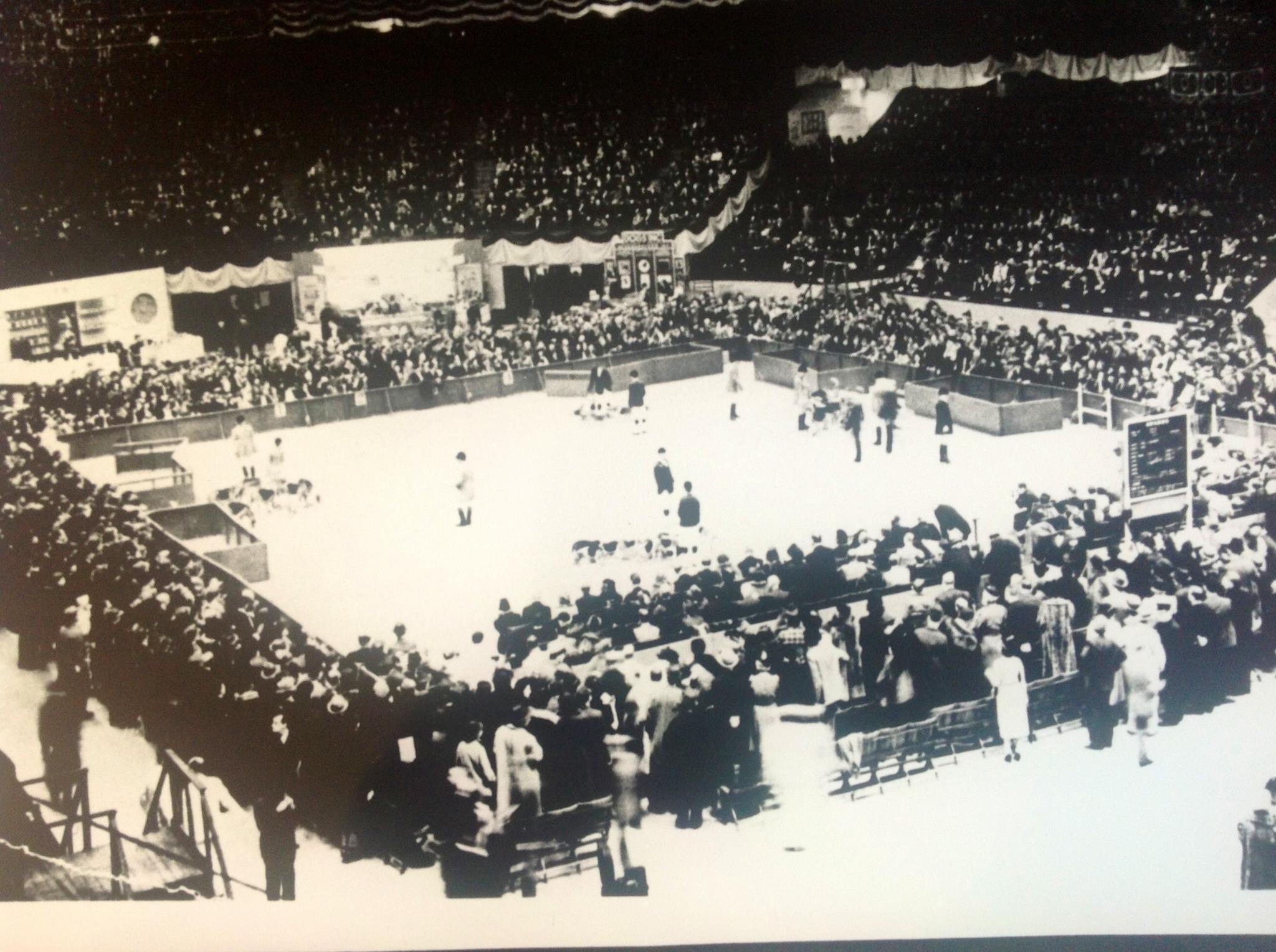 1932westminsterny.jpg