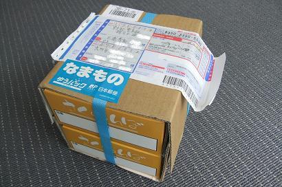 福島産 001