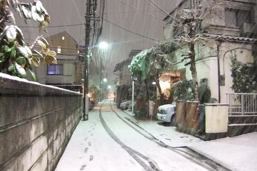 雑司が谷初積雪