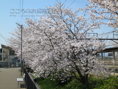 fukei002-04-2013.jpg
