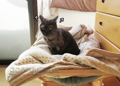 hanmokkuribu001-03-2013.jpg