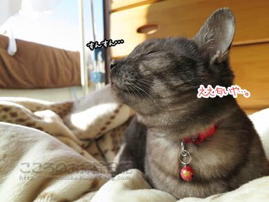 hanmokkuribu005-03-2013.jpg