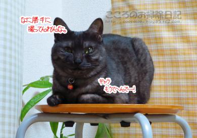 isuribu007-01-2013.jpg