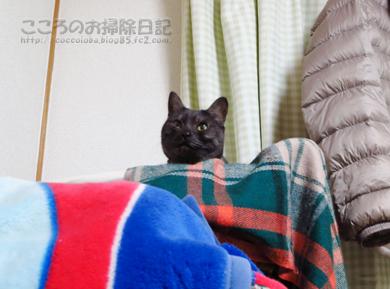 kagoribu002-01-2013.jpg