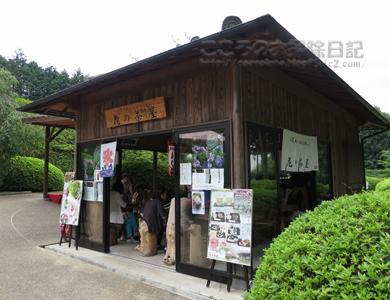 mimurotoji003-06-2013.jpg