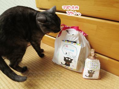 shushokuiwai003-04-2013.jpg