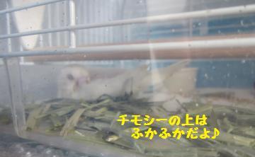 20110507.jpg