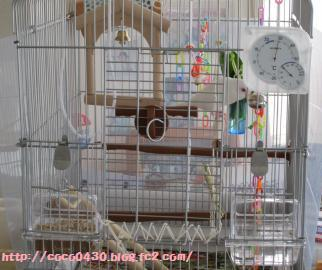 20110615.jpg