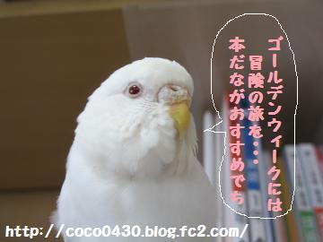 20130504-8.jpg