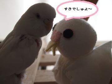ココちゃんとデカココちゃん1