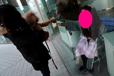 20110213-02kai.jpg