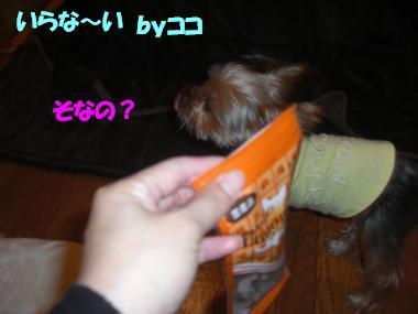 COCO+001_convert_20101223225451.jpg