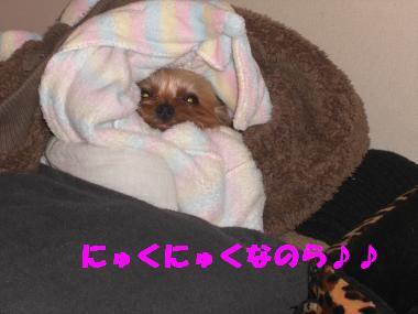 COCO+002_convert_20111218200114.jpg