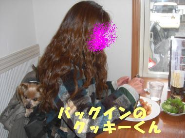 COCO+002_convert_20120419132523.jpg