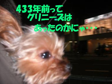 COCO+003_convert_20110115202959.jpg