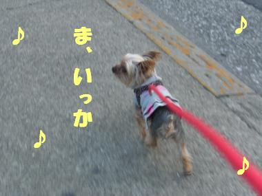 COCO+003_convert_20120222020805.jpg